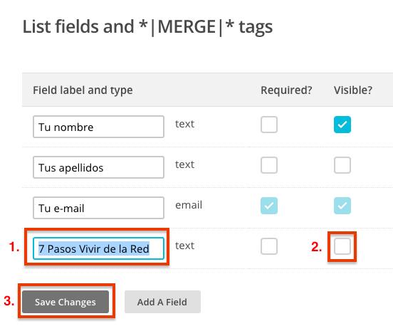 """Ponle un nombre que te sirva para identificarlo (el de tu post), desactiva la casilla de """"Visible"""" y haz click en """"Save changes""""."""